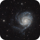 M101 - NGC5457 - Pinwheel Galaxy and friends,                                Mario Gromke