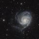 M101 - NGC5457 - Pinwheel Galaxy and friends,                                Mario Gromke