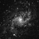 Messier 33,                                Paul