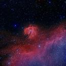 IC 2177 Seagull Nebula,                                CatusseD