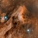 Pelican Nebula (IC 5070) Bicolor,                                Jim McKee