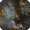 North America and Pelican Nebulae,                                Tommy Lease