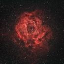 NGC 2237 Rosette Nebula NGC 2244,                                RikMM83