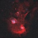 Flaming Star and Tadpole Nebula - BiColor Widefield,                                Jonas Illner