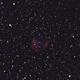"Abell 21 nebulosa planetaria ""Medusa Nebula"",                                Giuseppe Nicosia"