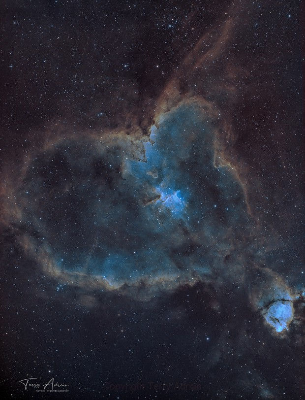 IC1805,                                Terry Adrian