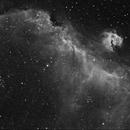 Seagull Nebula, Ha,                                David Dvali