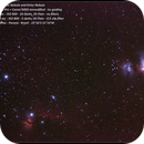 Orion Belt, Orion Nebula and more,                                Newton Cesar Florencio