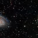M81 & M82 - Two Panel Mosaic,                                Josh Woodward