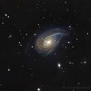 NGC 772 Nautilus Galaxy,                                PGU (Giuliano Pinazzi)