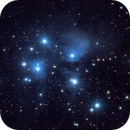 The Pleiades M45,                                Derek Foster
