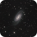 NGC2903 LRGB,                                antares47110815