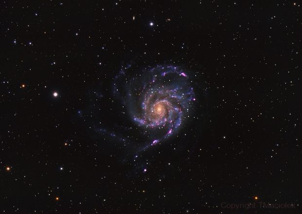 M51 - LRGB,                                Tim Maciolek