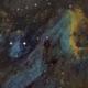 The Pelican nebula - IC5070 - Other version,                                Arnaud Peel