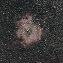 Rosette Nebula,                                toomanyhobbies
