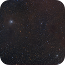 NGC 7023,                                Lepidopterous