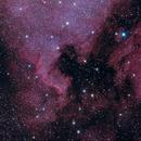 NGC 7000 IC 5070,                                Ric