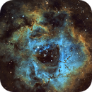 Rosette Nebula,                                KiwiAstro