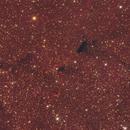 B161, B162, B163 and more dark nebulae in Cepheus,                                Salvatore Iovene