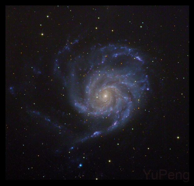 M101 Pinwheel Galaxy,                                Chan Yu Peng