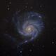 M101 Pinwheel Galaxy,                                Yu-Peng Chan