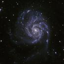M101 (Pinwheel Galaxy - NGC5457 - Cropped),                                Alain POYVRE