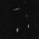 Leo Triplett - M65, M66, NGC 3628,                                Günther Dick