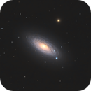 NGC2841 - Tiger's Eye Galaxy / 2020,                                Mikko Viljamaa