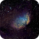 Sh2-101 Tulip Nebula,                                Michael Caligiuri