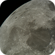 September Moon,                                dcronin1981