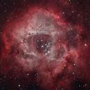 Rosette Nebula,                                Scott Tucker