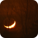 Moonset,                                Param Sharma