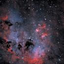 Tadpoles Nebula,                                Finn