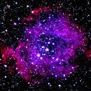 NGC2239 Rosette Nebula,                                JerryB Horseheads NY
