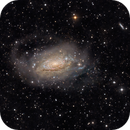 M63 with halo and tidal streams,                                Annehouw