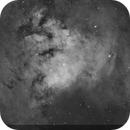 NGC 7822 - Ha,                                Jon Rista