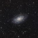 M33,   Triangulum Galaxy,                                Gianluca Galloni