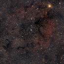 IC1396 - Elefantenrüsselnebel,                                Martin