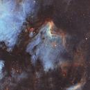 IC 5067 • Pelican Nebula SHO,                                Mikael De Ketelaere