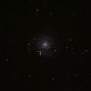 SN 2013ej  en M74,                                Pedro Asunción