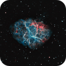 Crab Nebula,                                Lachezar Krastev