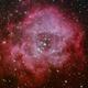 NGC 2237 Rosette Nebula,                                Larry Groom