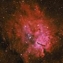 NGC 6823,                                Nathan Morgan (Th...