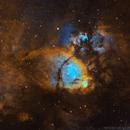 IC1795 Fishead nebula,                                Artūras Medvedevas