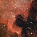 NGC 7000,                                David Kralj