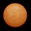 Solar Ha mosaic - 29 April 2012,                                Brian Ritchie