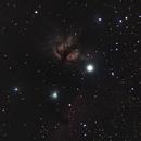 NGC 2024, NGC 2023 and IC 434,                                LOL221
