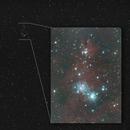 I wish you a Merry Christmas - NGC 2264  //  Christmas Tree,                                Wolfgang Zimmermann