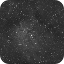 NGC6823 in H-Alpha,                                Rino