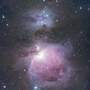 Orion Nebula,                                João Pedro Marques